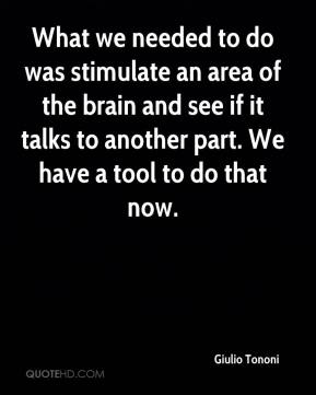 Giulio Tononi - What we needed to do was stimulate an area of the brain and see if it talks to another part. We have a tool to do that now.