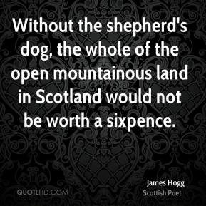 James Hogg - Without the shepherd's dog, the whole of the open mountainous land in Scotland would not be worth a sixpence.