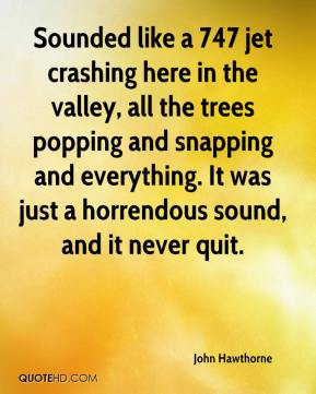 John Hawthorne  - Sounded like a 747 jet crashing here in the valley, all the trees popping and snapping and everything. It was just a horrendous sound, and it never quit.