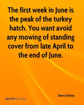 The first week in June is the peak of the turkey hatch. You want avoid any mowing of standing cover from late April to the end of June.