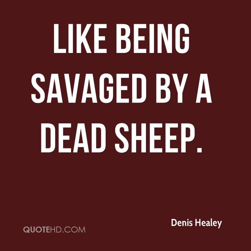 Like being savaged by a dead sheep.
