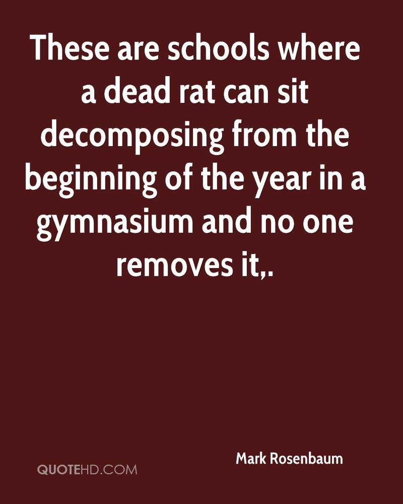 These are schools where a dead rat can sit decomposing from the beginning of the year in a gymnasium and no one removes it.