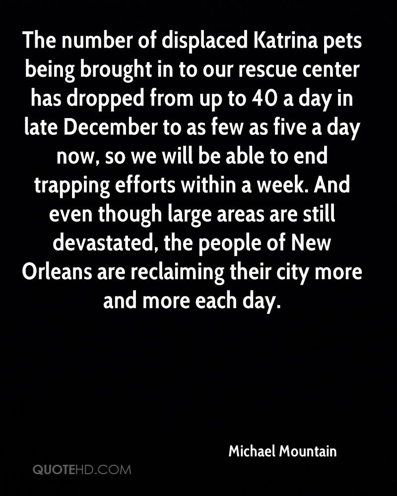The number of displaced Katrina pets being brought in to our rescue center has dropped from up to 40 a day in late December to as few as five a day now, so we will be able to end trapping efforts within a week. And even though large areas are still devastated, the people of New Orleans are reclaiming their city more and more each day.