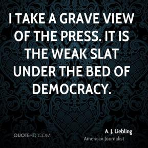 I take a grave view of the press. It is the weak slat under the bed of democracy.