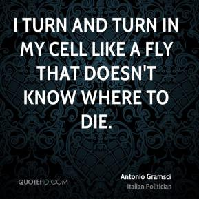 Antonio Gramsci - I turn and turn in my cell like a fly that doesn't know where to die.