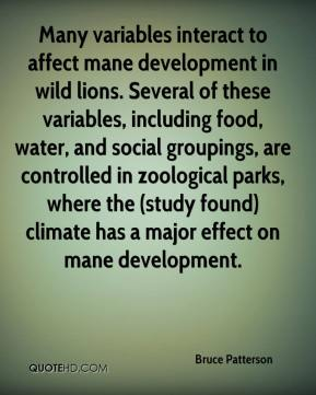 Many variables interact to affect mane development in wild lions. Several of these variables, including food, water, and social groupings, are controlled in zoological parks, where the (study found) climate has a major effect on mane development.