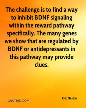 Eric Nestler - The challenge is to find a way to inhibit BDNF signaling within the reward pathway specifically. The many genes we show that are regulated by BDNF or antidepressants in this pathway may provide clues.