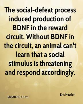 The social-defeat process induced production of BDNF in the reward circuit. Without BDNF in the circuit, an animal can't learn that a social stimulus is threatening and respond accordingly.