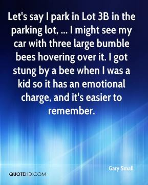 Gary Small - Let's say I park in Lot 3B in the parking lot, ... I might see my car with three large bumble bees hovering over it. I got stung by a bee when I was a kid so it has an emotional charge, and it's easier to remember.