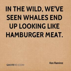 In the wild, we've seen whales end up looking like hamburger meat.