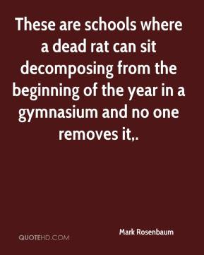 Mark Rosenbaum  - These are schools where a dead rat can sit decomposing from the beginning of the year in a gymnasium and no one removes it.