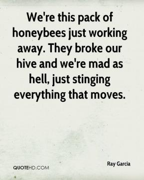 Ray Garcia  - We're this pack of honeybees just working away. They broke our hive and we're mad as hell, just stinging everything that moves.