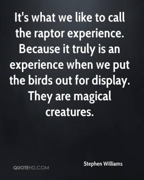 Stephen Williams  - It's what we like to call the raptor experience. Because it truly is an experience when we put the birds out for display. They are magical creatures.
