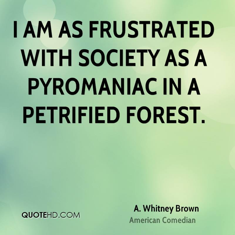 I am as frustrated with society as a pyromaniac in a petrified forest.