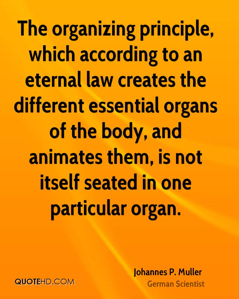 The organizing principle, which according to an eternal law creates the different essential organs of the body, and animates them, is not itself seated in one particular organ.