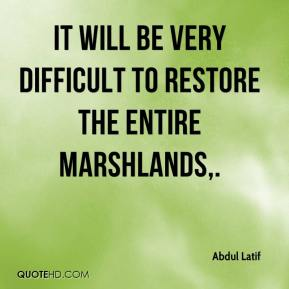 It will be very difficult to restore the entire marshlands.