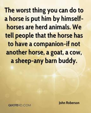 John Roberson  - The worst thing you can do to a horse is put him by himself-horses are herd animals. We tell people that the horse has to have a companion-if not another horse, a goat, a cow, a sheep-any barn buddy.