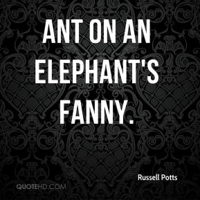 Russell Potts  - ant on an elephant's fanny.