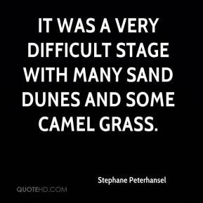 Stephane Peterhansel  - It was a very difficult stage with many sand dunes and some camel grass.