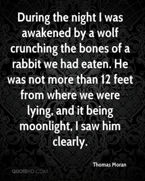 During the night I was awakened by a wolf crunching the bones of a rabbit we had eaten. He was not more than 12 feet from where we were lying, and it being moonlight, I saw him clearly.