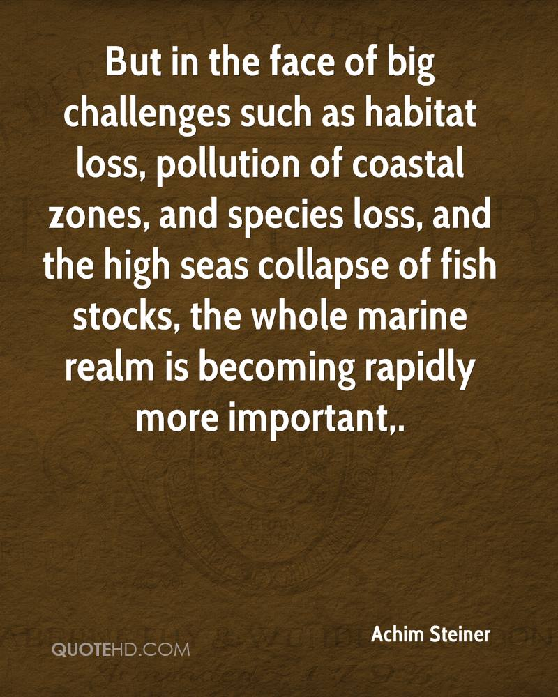 Pollution Quotes Achim Steiner Quotes  Quotehd