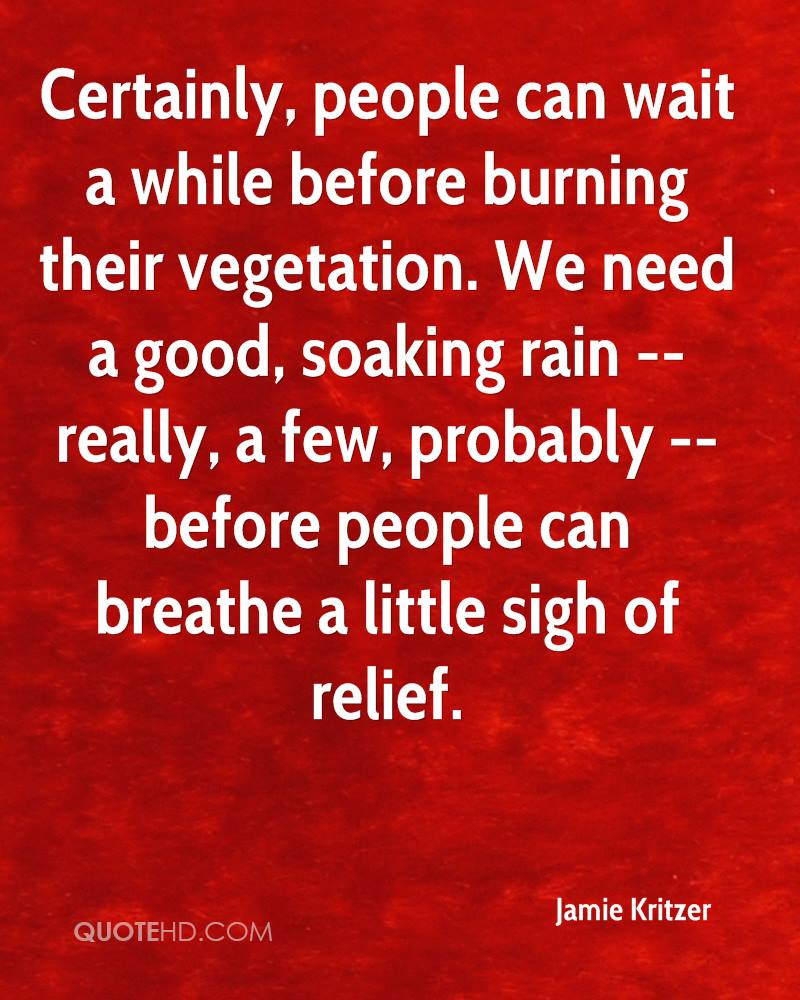 Certainly, people can wait a while before burning their vegetation. We need a good, soaking rain -- really, a few, probably -- before people can breathe a little sigh of relief.
