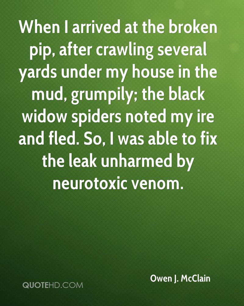 When I arrived at the broken pip, after crawling several yards under my house in the mud, grumpily; the black widow spiders noted my ire and fled. So, I was able to fix the leak unharmed by neurotoxic venom.