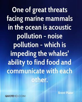 Brent Plater - One of great threats facing marine mammals in the ocean is acoustic pollution - noise pollution - which is impeding the whales' ability to find food and communicate with each other.