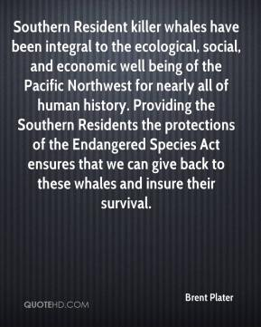 Brent Plater - Southern Resident killer whales have been integral to the ecological, social, and economic well being of the Pacific Northwest for nearly all of human history. Providing the Southern Residents the protections of the Endangered Species Act ensures that we can give back to these whales and insure their survival.