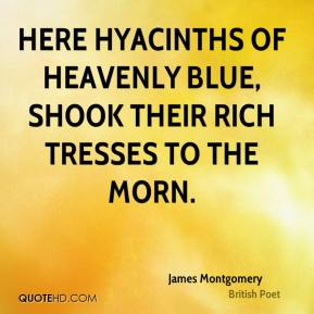 James Montgomery - Here hyacinths of heavenly blue, shook their rich tresses to the morn.