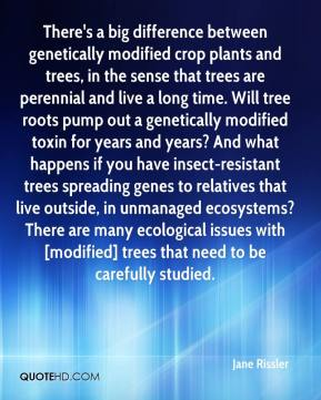 Jane Rissler  - There's a big difference between genetically modified crop plants and trees, in the sense that trees are perennial and live a long time. Will tree roots pump out a genetically modified toxin for years and years? And what happens if you have insect-resistant trees spreading genes to relatives that live outside, in unmanaged ecosystems? There are many ecological issues with [modified] trees that need to be carefully studied.