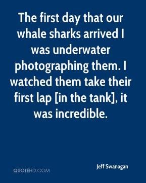 Jeff Swanagan  - The first day that our whale sharks arrived I was underwater photographing them. I watched them take their first lap [in the tank], it was incredible.
