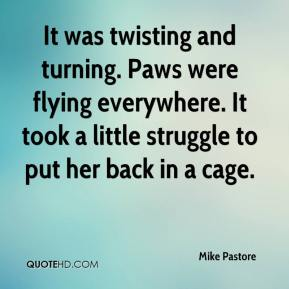 It was twisting and turning. Paws were flying everywhere. It took a little struggle to put her back in a cage.