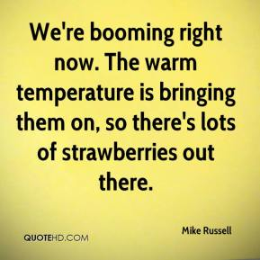 We're booming right now. The warm temperature is bringing them on, so there's lots of strawberries out there.