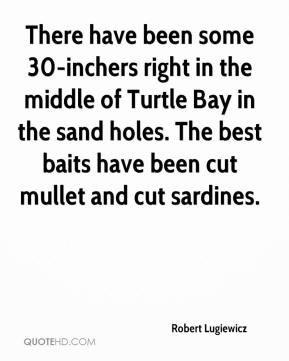 Robert Lugiewicz  - There have been some 30-inchers right in the middle of Turtle Bay in the sand holes. The best baits have been cut mullet and cut sardines.