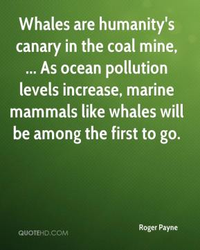 Roger Payne  - Whales are humanity's canary in the coal mine, ... As ocean pollution levels increase, marine mammals like whales will be among the first to go.