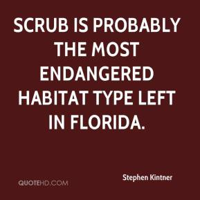 Stephen Kintner  - Scrub is probably the most endangered habitat type left in Florida.