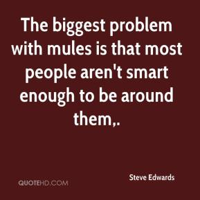 Steve Edwards  - The biggest problem with mules is that most people aren't smart enough to be around them.
