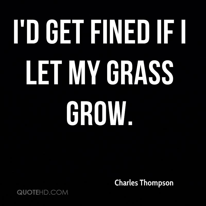 I'd get fined if I let my grass grow.