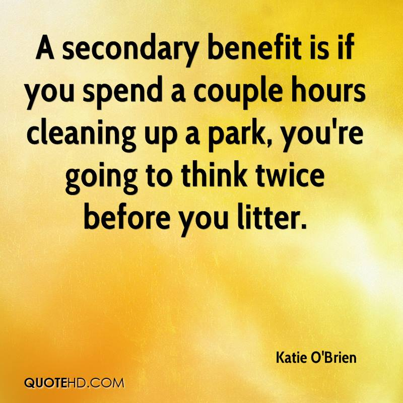 A secondary benefit is if you spend a couple hours cleaning up a park, you're going to think twice before you litter.