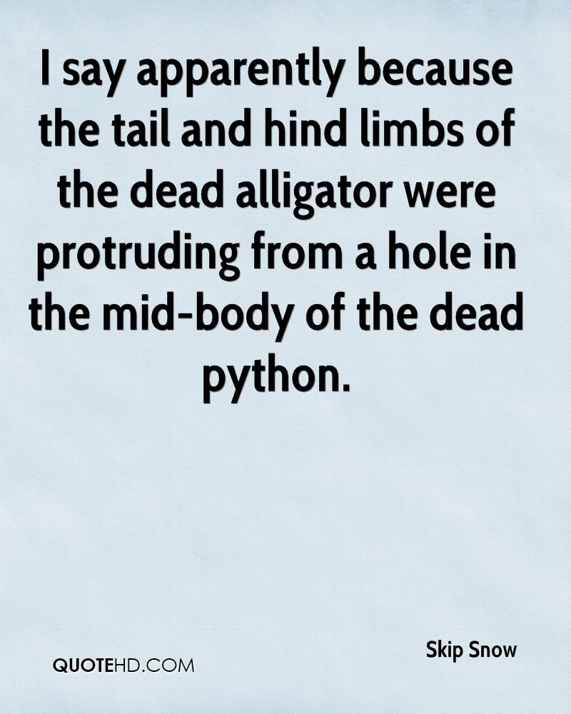 I say apparently because the tail and hind limbs of the dead alligator were protruding from a hole in the mid-body of the dead python.