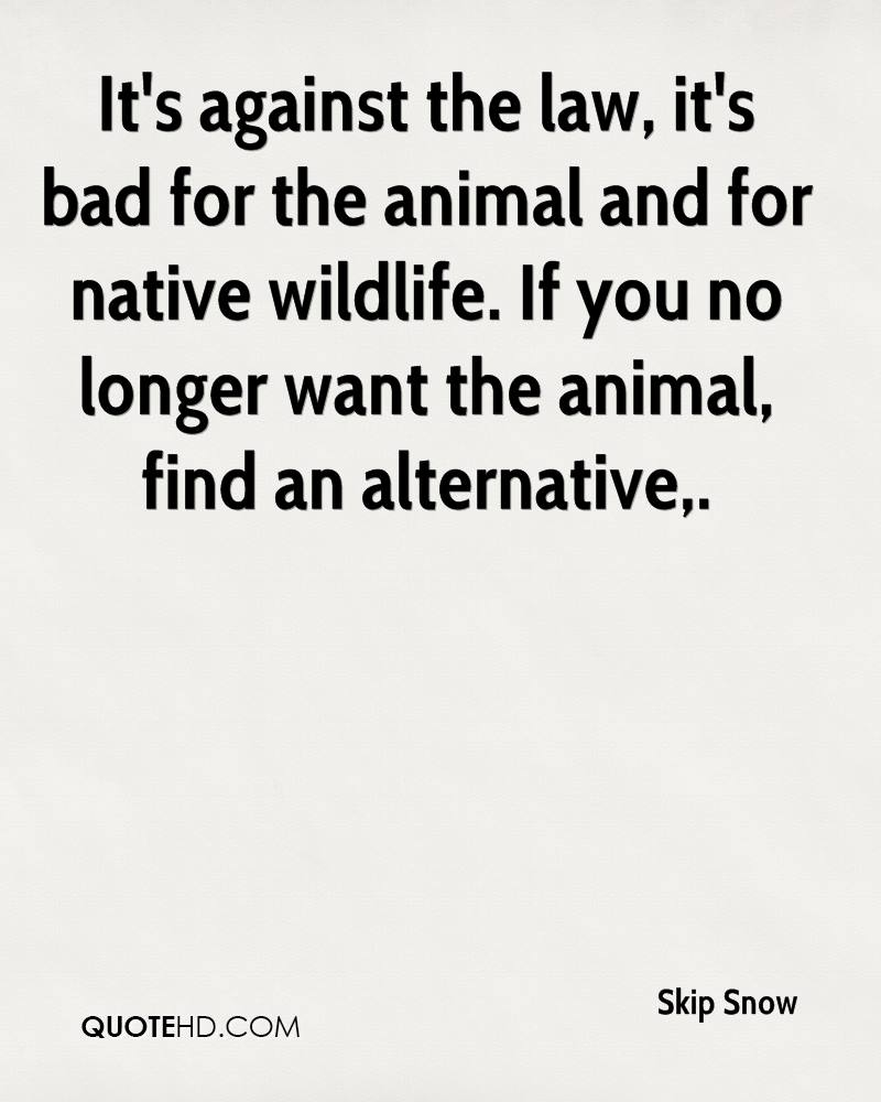 It's against the law, it's bad for the animal and for native wildlife. If you no longer want the animal, find an alternative.