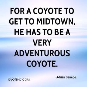 Adrian Benepe - For a coyote to get to midtown, he has to be a very adventurous coyote.