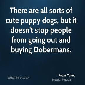 Angus Young - There are all sorts of cute puppy dogs, but it doesn't stop people from going out and buying Dobermans.