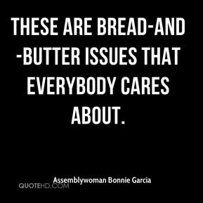 Assemblywoman Bonnie Garcia - These are bread-and-butter issues that everybody cares about.