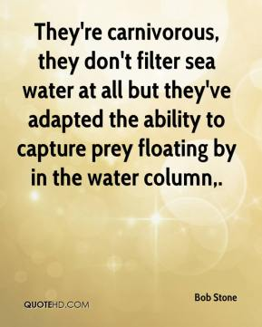 Bob Stone - They're carnivorous, they don't filter sea water at all but they've adapted the ability to capture prey floating by in the water column.