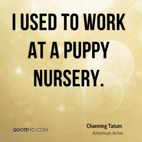 I used to work at a puppy nursery.