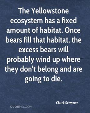 The Yellowstone ecosystem has a fixed amount of habitat. Once bears fill that habitat, the excess bears will probably wind up where they don't belong and are going to die.