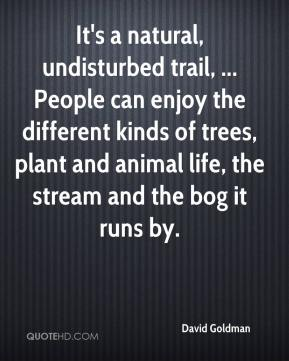 It's a natural, undisturbed trail, ... People can enjoy the different kinds of trees, plant and animal life, the stream and the bog it runs by.