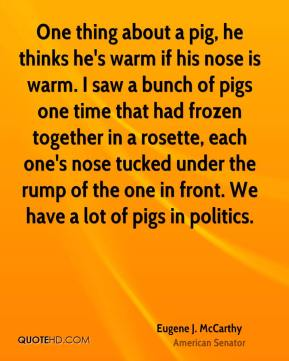 Eugene J. McCarthy - One thing about a pig, he thinks he's warm if his nose is warm. I saw a bunch of pigs one time that had frozen together in a rosette, each one's nose tucked under the rump of the one in front. We have a lot of pigs in politics.